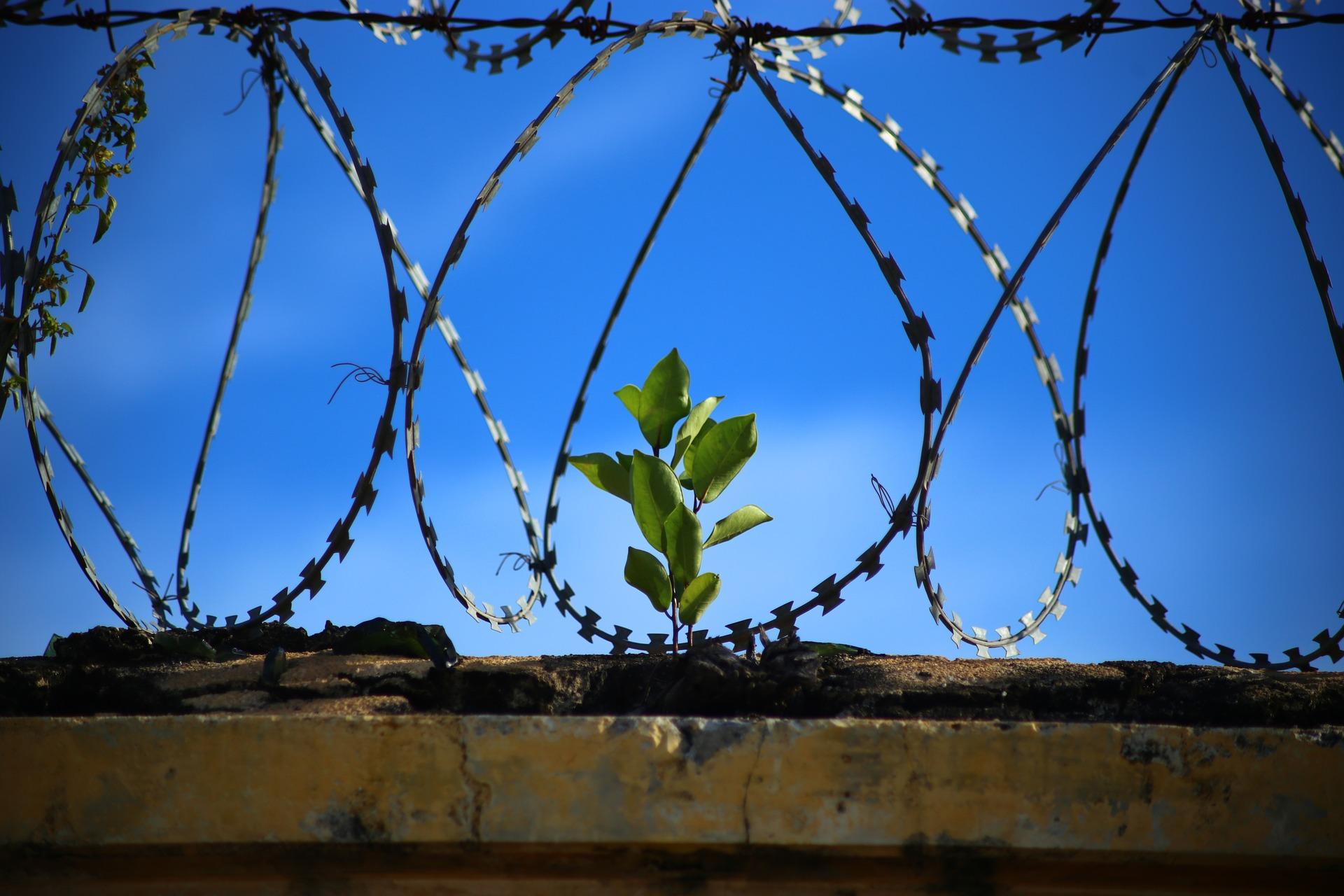Khutbah Jumat Singkat: Kemerdekaan Sejati